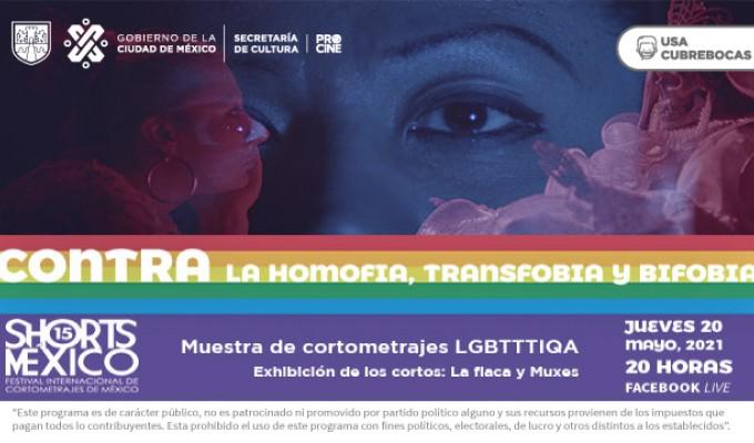 Cartel_ShortsMx_Transfobia.jpg